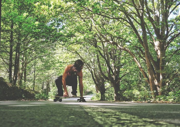 Tree Longboard Road Nature Day Green Adventure Photography Tranquil Scene Sky Scenics Beauty In Nature Calm Peace