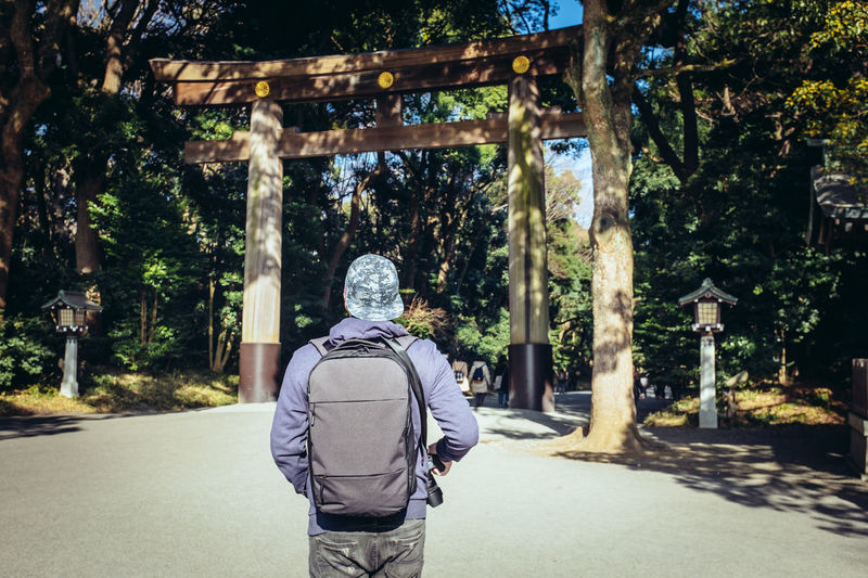 Japan Tokyo Architecture Casual Clothing City Day Meji Jingu Shrine Men Nature One Person Outdoors Real People Road Sunlight Tourism Tree Walking