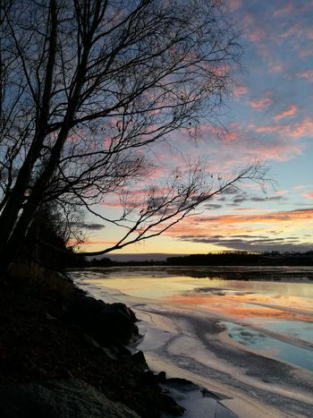 Colours Of Nature Tree Silhouette Colourful Sky Iced River ❄