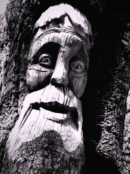 Treebeard Wood Wood Sculpture Tree Face Old Man Beard Ashton Park Eyes Man Forest Old Man Of The Forest
