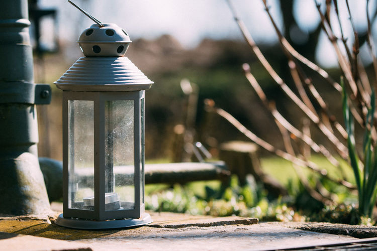 Close-up Container Day Electric Lamp Focus On Foreground Glass - Material Growth Lantern Lighting Equipment Metal Nature No People Outdoors Plant Selective Focus Still Life Sunlight Table Transparent Tree Wood - Material