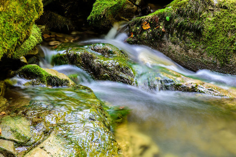 Water Campo Di Bonis Taipana Friuli Venezia Giulia Friuli Waterfall Water Flowing Water Motion Beauty In Nature River Nature Long Exposure Scenics Rock - Object Moss No People Tranquil Scene Outdoors Tranquility Blurred Motion Rapid Day Forest Running Water Freshness