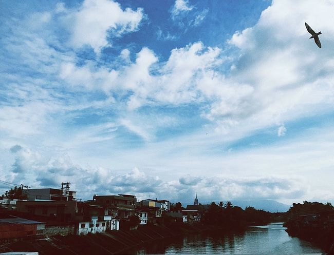 Free Bird River Photography Sky And Clouds Buildings Capture The Moment Birds Water Sky Outdoors No People Scenics Beauty In Nature Animal Themes