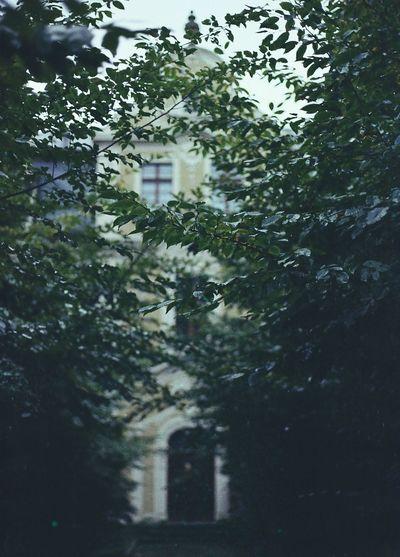 35mm Architecture Autumn Building Exterior Canon AE-1 Castle Filmisnotdead Ishootfilm Liberec