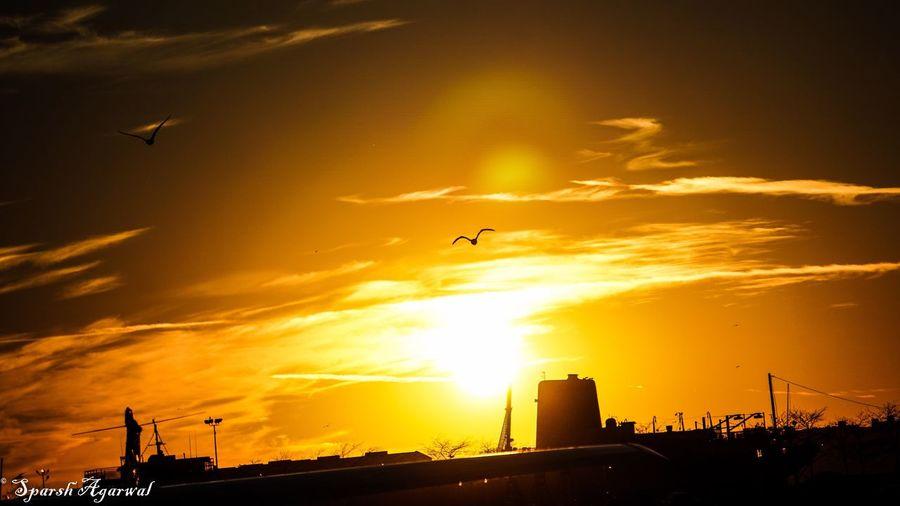 43 Golden Moments the golden sunset