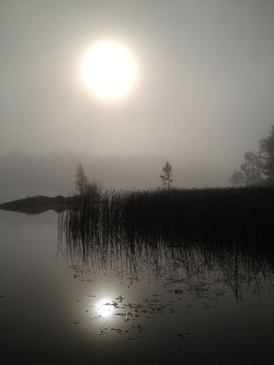Foggy Morning Melancholic Landscapes The Purist (no Edit, No Filter) Calmwater