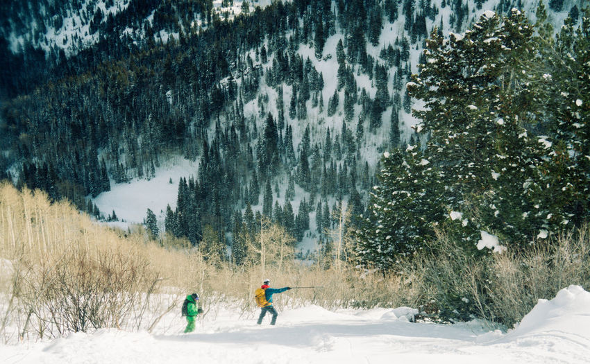 Two skiers stop for a break after a run in Big Cottonwood Canyon outside of Salt Lake City, UT Adult Adults Only Beauty In Nature Cold Temperature Day Full Length Landscape Leisure Activity Nature One Person Outdoors Outoor People Powder Snow Real People Relaxing Scenics Skiing Skill  Snow Snowboarding Snowing Tree Winter Winter