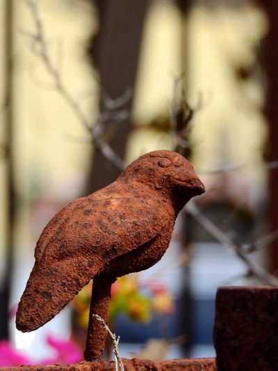 Iron Art Handicraft Design Iron Bird Sparrow Rusty