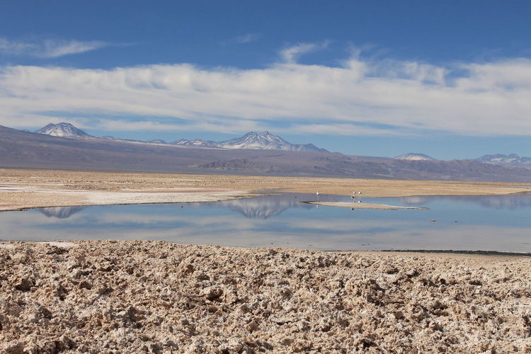 Chile Beauty In Nature Cloud - Sky Lake Landscape Mountain Mountain Range Nature No People Outdoors Reflection Salar De Atacama Salt - Mineral Salt Flat Scenics Sky Tranquil Scene Tranquility Water