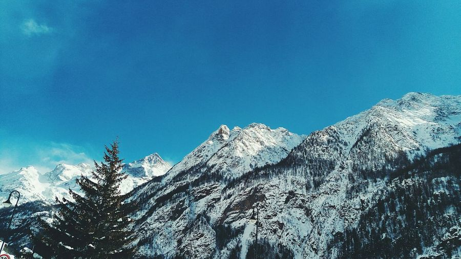 Blue Low Angle View Nature Sky No People Growth Tree Clear Sky Close-up Day Beauty In Nature Outdoors Snow Italia Cold Temperature Beauty In Nature Nature Winter Snow Neve Winter Wintertime Hiver Bluesky Nieve The Great Outdoors - 2017 EyeEm Awards