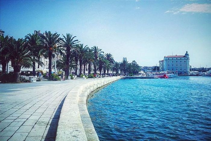 Miss it already.. 😔🌊🌴🌞 (Split, Croatia) Water Water_captures Ocean Oceanside Oceanporn Palmtree Palmtrees Promenade Sky Sea Seaside Seaporn Bluesea Tree Trees TreePorn Treescollection Tree_captures Landscape Landscapelovers Landscape_lovers Landscape_captures Nature Naturelover Naturelovers nature_perfection