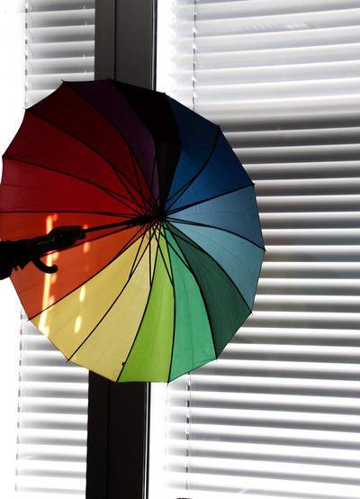 Close-up of umbrella on window