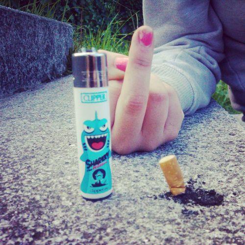Smoke Sharky Clipper