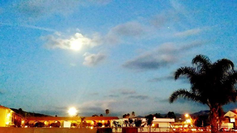 Full Moon Arising Dusk Dusk In The City Dusk Sky Moon Moonlight Moon Shots Scenics cityscapes Sundown Full Moon Sky Evening Sky Colors Tree Scenics - Nature Serene Outdoors Crowd Illuminated Star - Space Blue Sky Cloud - Sky