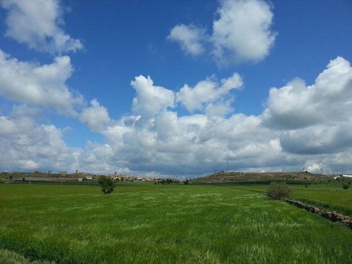 prats verds i Cel Blau en algun racó de l'Urgell / Greenfields and Bluesky somewhere in Urgell, Catalonia