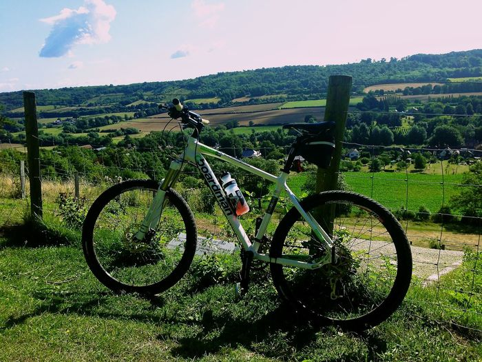 Bicycle Day Grass Land Vehicle Landscape Mode Of Transport Nature Outdoors Transportation