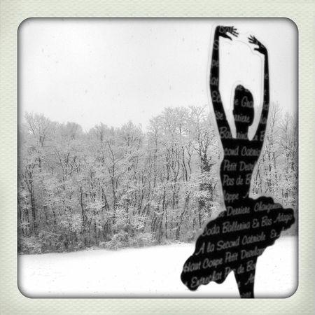 Snow Dancer Black And White Polaroid