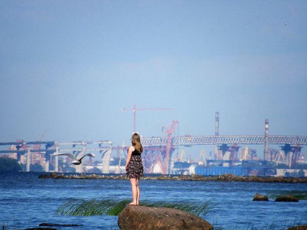 St. Petersburg Petergof The Gulf Of Finland