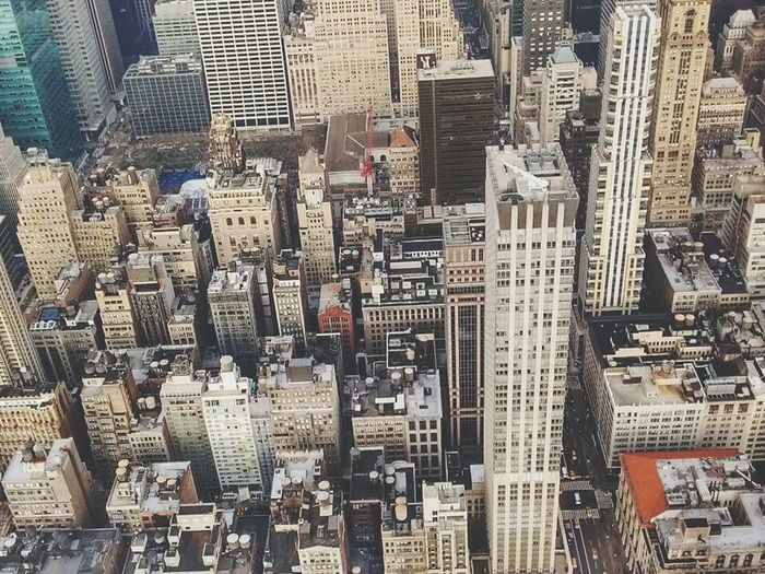 Flying High new york