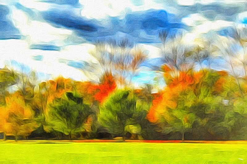 Abstract Treescape Autumn Trees Paint Edit Autumn Colors