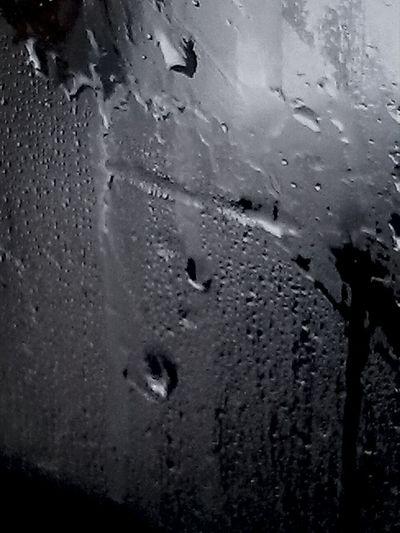 Likedrops Rain
