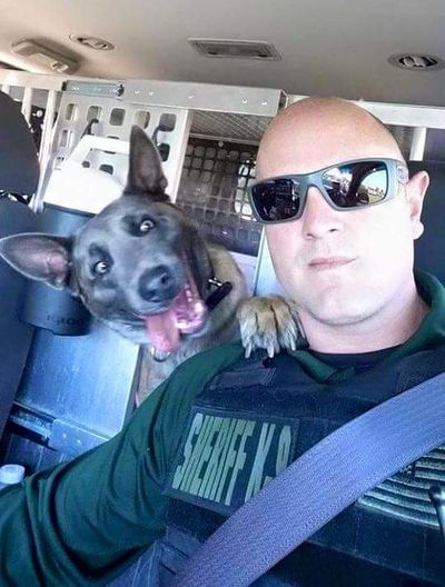 Sheriff K9 K9 My Dogs Are Cooler Than Your Kids