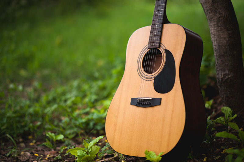 Acoustic Guitar Arts Culture And Entertainment Close-up Day Field Focus On Foreground Green Color Guitar Land Music Musical Equipment Musical Instrument Musical Instrument String Nature No People Outdoors Plant Single Object String String Instrument