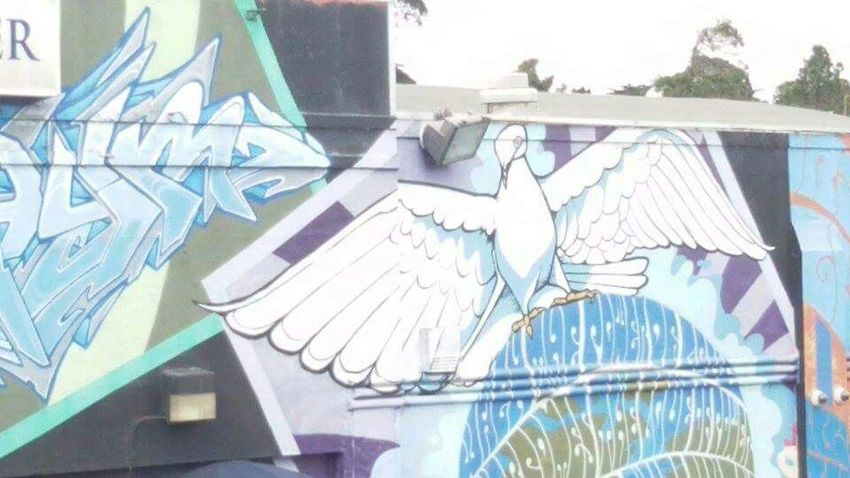 San Francisco Downtown California Graffiti Eye4photography  EyeEm Best Shots Pigeon ArtWork Nofilter#noedit