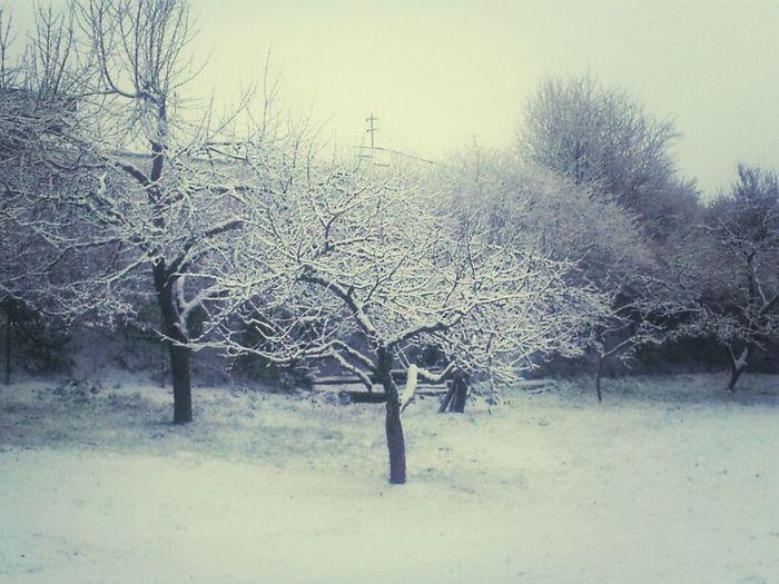 Der wohl erstmal letzte Schnee...