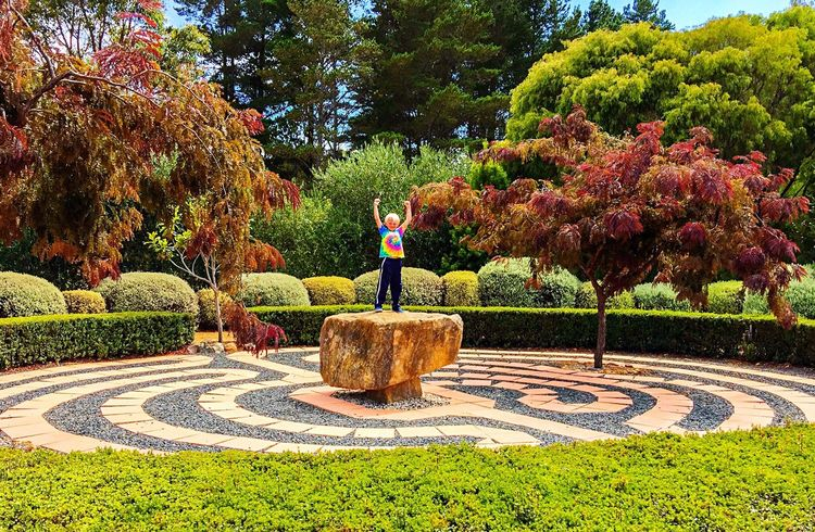 King of the Rock Youth Of Today Boy Childhood Memories Child King Of The World Rock Limestone Nature Photography Amaze'n Margaret River Margaret River Region Botanical Garden Australia Blue Sky Meditation Walk Meditation Garden Walking Maze Maze Ground Pattern Pattern Pieces Nature Garden Photography Walking Meditation Path Path In Nature Pathway