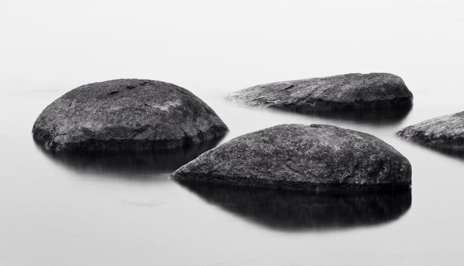 Serenity Bw_collection Monochrome Black And White Nature_collection