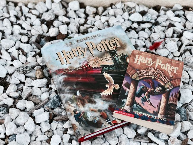 """I don't go looking for trouble, trouble usually finds me."" Harrypotter Books Potterhead Outdoors Iphone7plusportraitmode Harrypotterandthephilosophersstone"