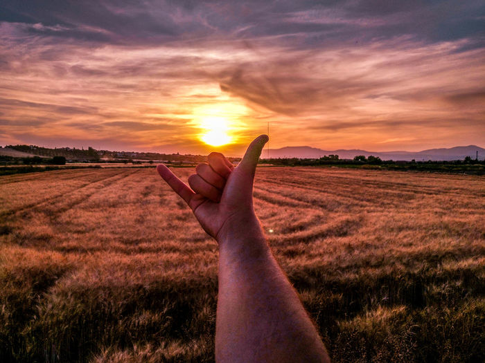 Man gesturing shaka gesture sign on field against sky during sunset