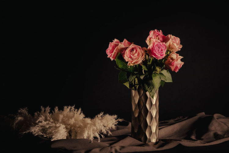 Close-up of pink flower vase against black background