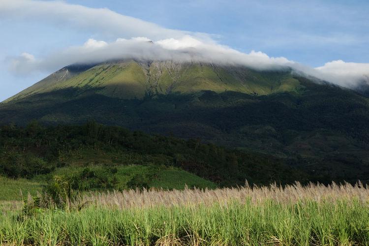 EyeEm Hill Kanlaon Volcano Landscape Majestic Mountain Mountain Range MT. KANLAON Nature Negros Island Outdoors Philippines Scenics