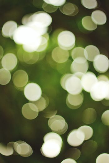 Boke' Defocused Green Color Abstract Christmas No People Backgrounds Christmas Decoration
