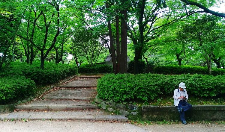 """""""Rest if you must, but don't you quit."""" Tsuruma Park Nagoya Nagoya-shi Chubu Japan Japan Photography Resting Streetphotography Green Park Asus Asuszf3 Asus Zenfone Photography AsusPixelMaster Asuszenfone3 Asus Zenfone Photos Asus Photography EyeEm Best Shots EyeEmNewHere EyeEm Selects EyeEm Best Shots - Nature Eyeem Philippines Eyeem Japan Photo Tree Green Color Growth Outdoors Nature Men Plant"""