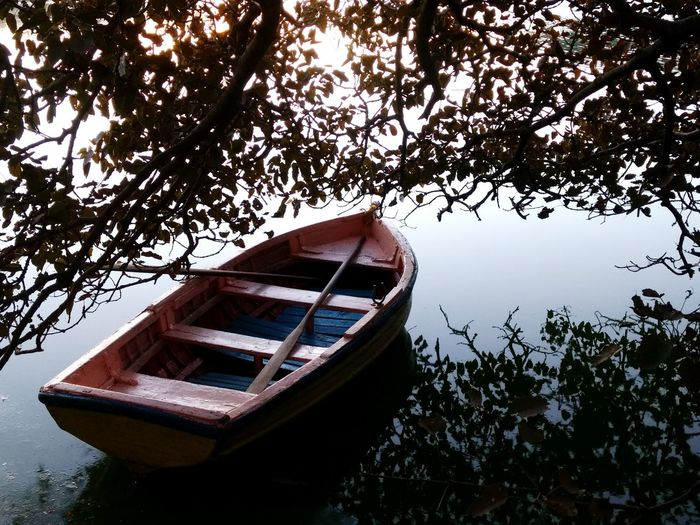 alone.... Nautical Vessel Water Moored Tree No People Day Rowboat