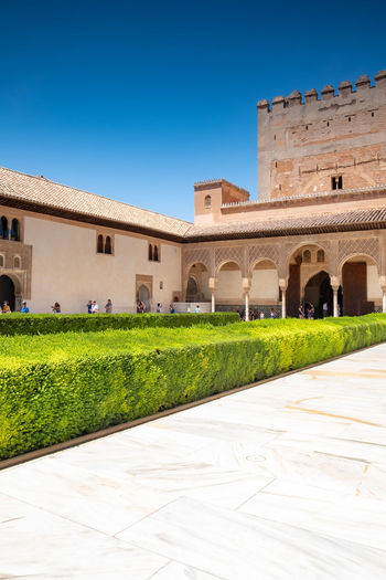 Alhambra (Granada) Alhambra Palace Granada Alhambra De Granada  Granada, Spain The Week on EyeEm Alhambra Arch Architectural Column Architecture Blue Building Exterior Clear Sky Courtyard  Day Footpath Grass Green Color History Lawn Nature Outdoors Plant Sky Sunlight The Past