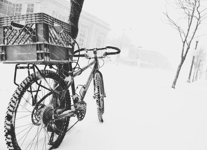 Black & White Studies Of Whiteness Eye4photography  EyeEm Best Shots EyeEm Celebrate Your Ride The Great Outdoors - 2017 EyeEm Awards Shades Of Winter