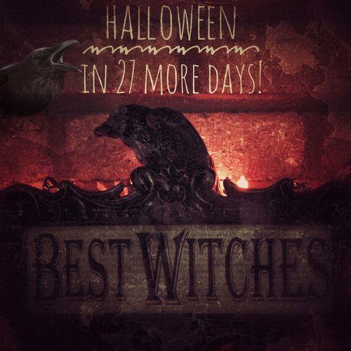 Decorations Ilovehalloween Halloween Raven