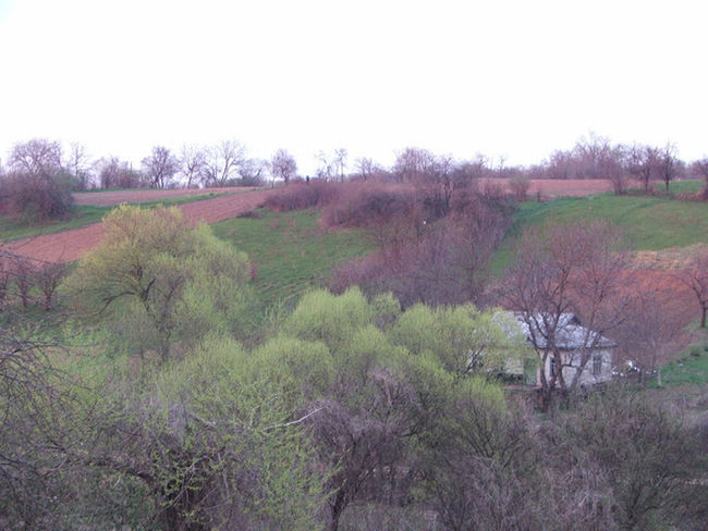 Nature Ukraine