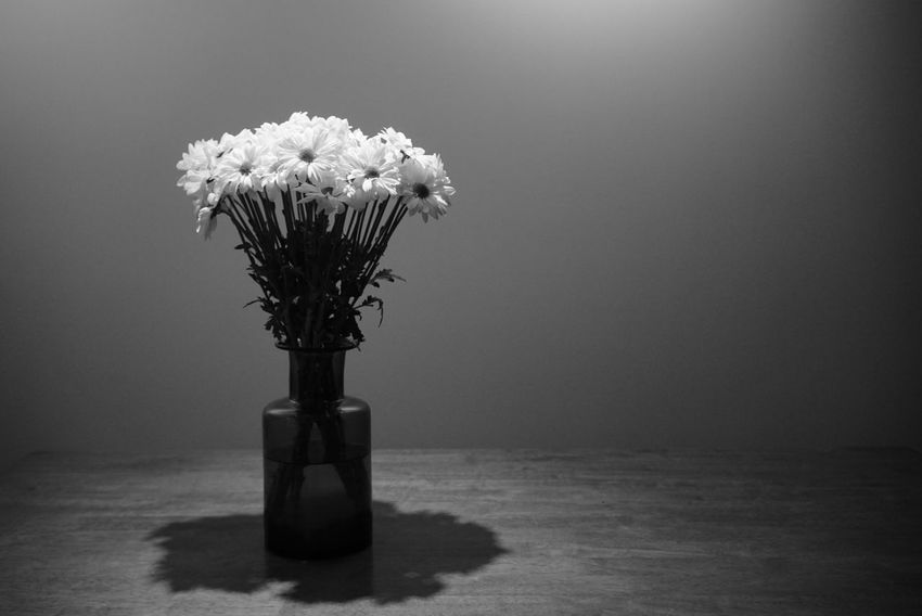 Flowers Flower Vase Table Indoors  No People black and white B&h Bh