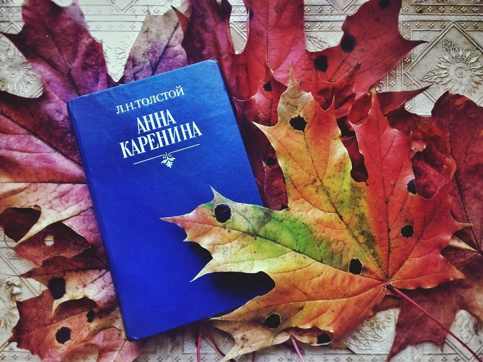 Autumn Season  Leaves No People Bookstagram Booking A Room Booklover Book Bookphoto BookLovers Bookme AnnaKarenina Classic First Eyeem Photo
