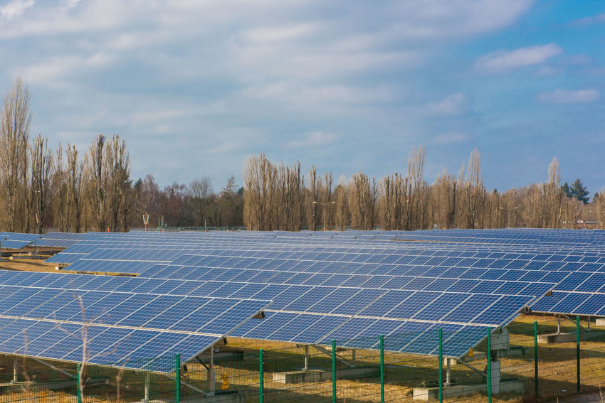 Green Energy Solar Solar Panel Alternative Energy Cloud - Sky Day Electrical Power Electricity  Electricity  Energy Environment Environmental Conservation Field Fuel And Power Generation Go-west-photography.com Land Nature No People Outdoors Plant Power Supply Renewable Energy Sky Solar Energy Solar Panel Technology Tree