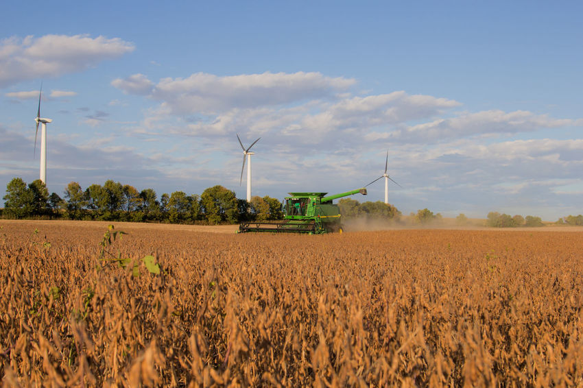 Autumn Cloud John Deere Soybean Agriculture Bean Canon60d Canonphotography Combine Crop  Day Dust Fall Farm Field Fuel And Power Generation Harvest Landscape Outdoors Renewable Energy Rural Scene Sky Wind Power Wind Turbine Windmill