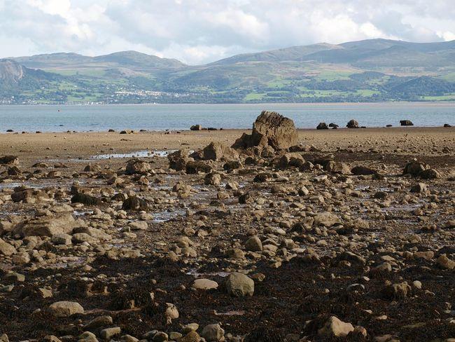 Landscape Outdoors Scenics Pebbles Beach Sea Sand Seaweed Coastline Water Rocks Rocks And Water Hills Walking Around Angelsey Wales