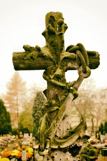 Cmentarz Cemetary Cemetery Cementery