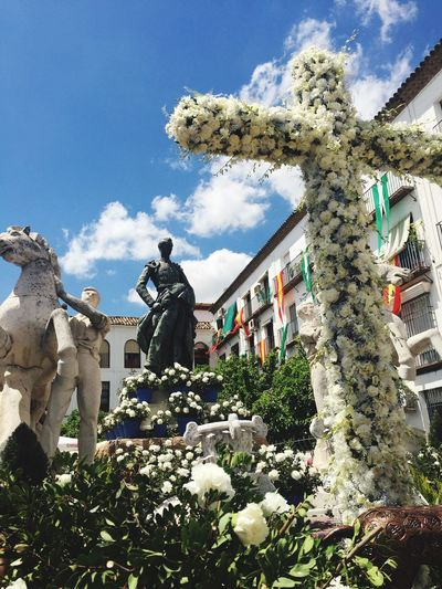Cruces De Mayo Córdoba Plant Sky Flower Flowering Plant Nature Day Cloud - Sky Sculpture Statue Human Representation