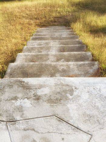 Stairs Grass Grassy Showcase: February Steps Park Walkway IPhoneography Photography In Motion Getty X EyeEm Check This Out IPhoneArtism Iphone6 IPhone Photography Guam Iphoneonly Hello World Iphonephotography Motus Natura